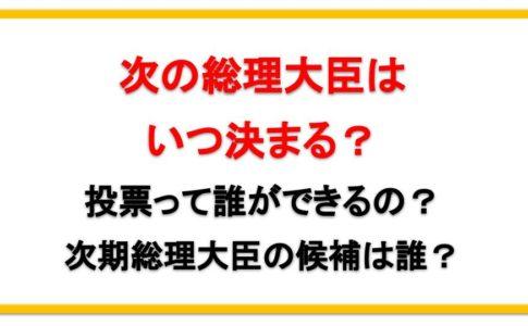 安倍総理辞任で次期総理大臣はいつ決まる?誰が投票できるの?後任の候補は石破?岸田?